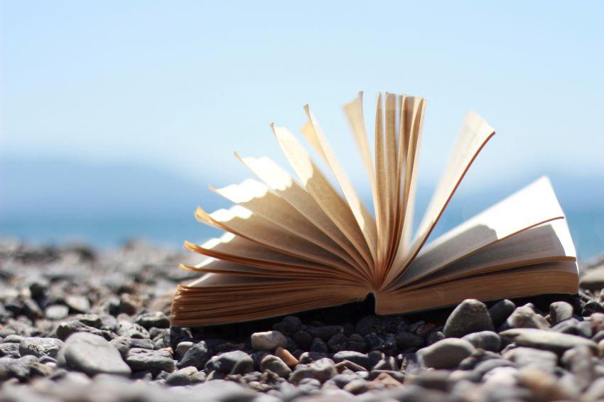Buchseiten im Wind