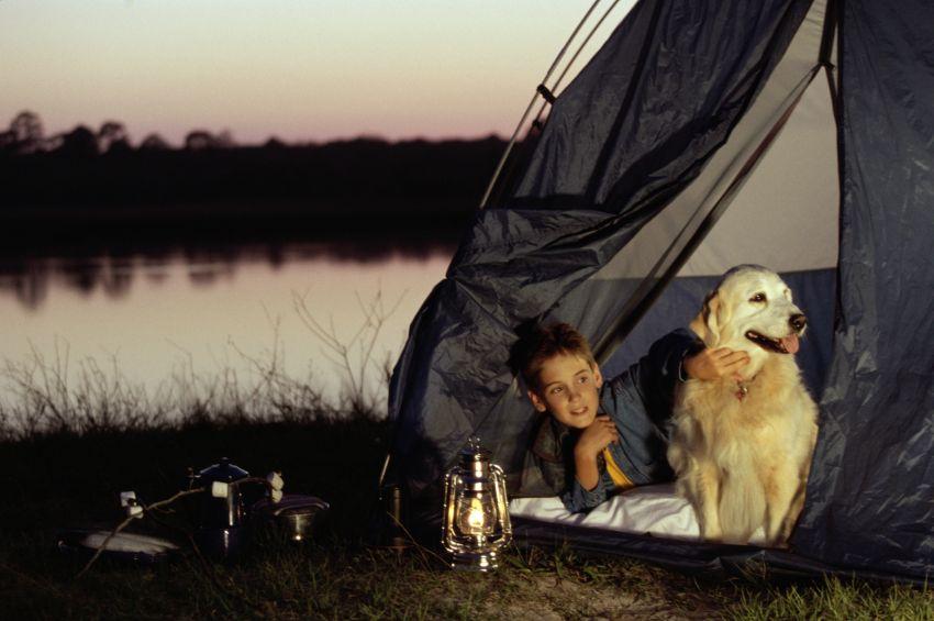 Mit Hund campen